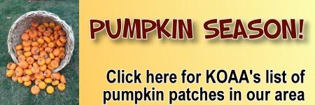 Pumpkin Patches in and around Ann Arbor - Detroit